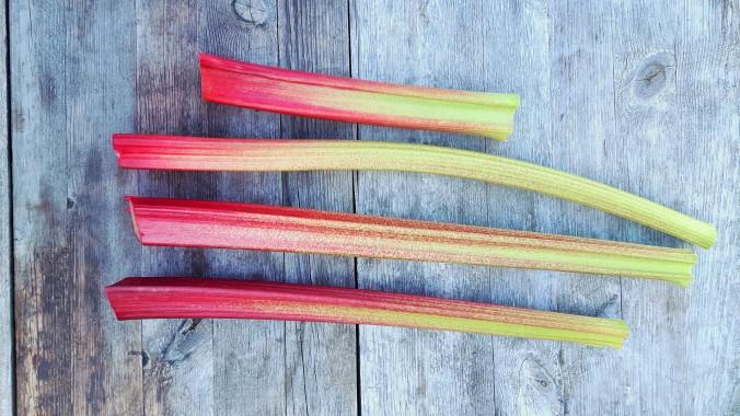 rhubarb cake 15 (2)