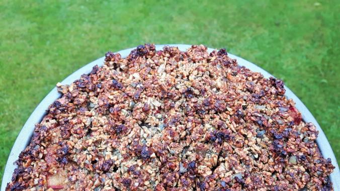 rhubarb cake 7 (2)